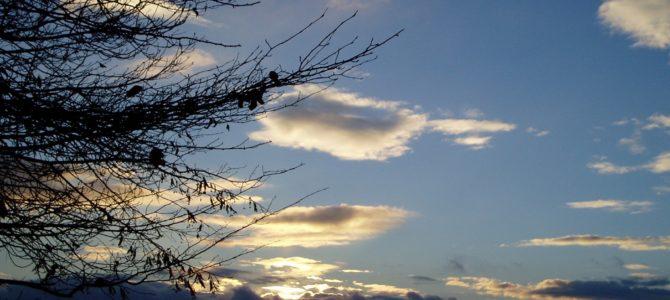 Průvodce Adventem – Čtvrtek 17. prosince
